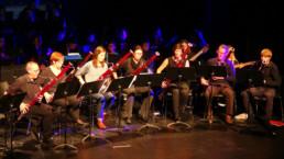De Academie - Muziek - Volwassenen